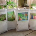 Print Canvas Bags - Original prints on totes, see prints